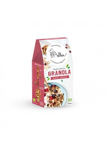 Granola - Canneberges - BIO 300g