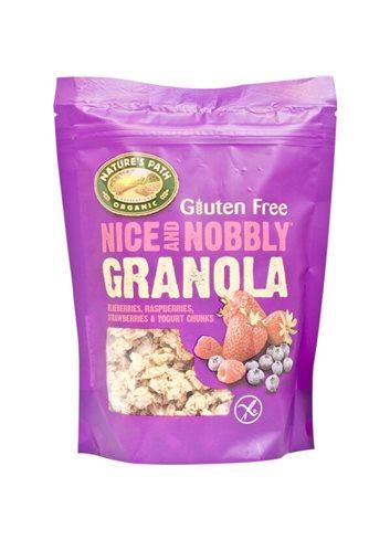 Nice & Nobbly Granola fruit & noten (box) BIO/Glutenvrij 325g
